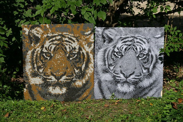 (l) 4 color Tiger (r) 2 color Tiger